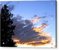 Evening Color Acrylic Print by Will Borden