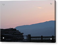 Evening Glow Acrylic Print by Tin Lid Photography
