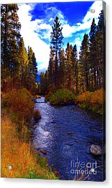 Evening Hatch On The Metolius River Photograph Acrylic Print