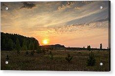 Evening Meadow. Horytsya, 2014. Acrylic Print