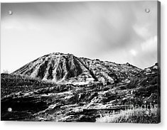 Evening On Koko Crater Acrylic Print by Charmian Vistaunet