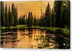 Acrylic Print featuring the photograph Evening On The Henry's Fork  by TL Mair