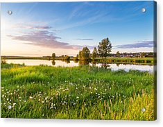 evening on the river with a field of dandelions, Russia, Ural Acrylic Print by Alex Rudny