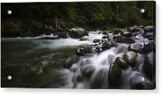 Evening On The Sarapiqui River Acrylic Print
