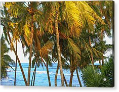 Evening Palms In Trade Winds Acrylic Print by Bonnie Follett