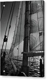 Evening Sail Bw Acrylic Print
