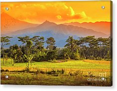 Acrylic Print featuring the photograph Evening Scene by Charuhas Images