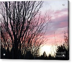 Acrylic Print featuring the photograph Evening Sky - October 27 by Jackie Mueller-Jones