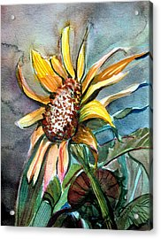 Evening Sun Flower Acrylic Print by Mindy Newman