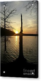 Evening Thoughts Acrylic Print