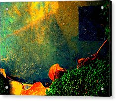 Ever Changing Acrylic Print by Shirley Sirois