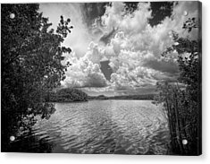 Everglades Lake - 0278abw Acrylic Print