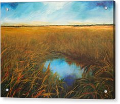 Everglades Acrylic Print by Michele Hollister - for Nancy Asbell