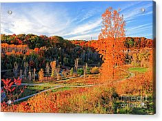 Acrylic Print featuring the photograph Evergreen Brick Works Autumn by Charline Xia