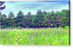 Evergreen Lake - Impressionism Acrylic Print