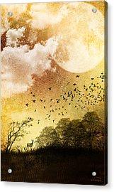 Every Day Somewhere Acrylic Print by Emma Alvarez