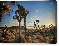 Every Time We Touch Acrylic Print by Laurie Search