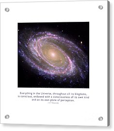 Acrylic Print featuring the photograph Everything Is Conscious by Kristen Fox
