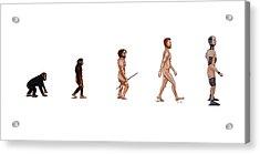 Evolution Of Rob Acrylic Print by Jennifer Lynch