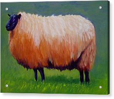 Acrylic Print featuring the painting Ewe Are  Beautiful by Marie Hamby