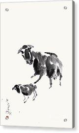 Ewe With Lamb  Acrylic Print by Nadja Van Ghelue