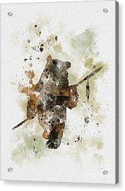 Ewok Acrylic Print by Rebecca Jenkins