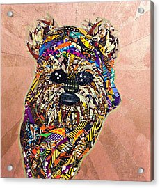 Ewok Star Wars Afrofuturist Collection Acrylic Print
