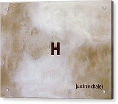 Exhale Acrylic Print by Andrew Crane