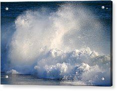 Exhilaration  Acrylic Print by Dianne Cowen