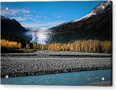 Exit Glacier Kenai Fjords National Park Acrylic Print