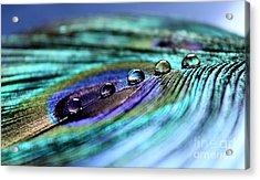 Exotic Drops Of Life Acrylic Print