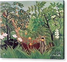 Exotic Landscape Acrylic Print by Henri Rousseau