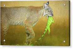 Exotic Lunch. Acrylic Print