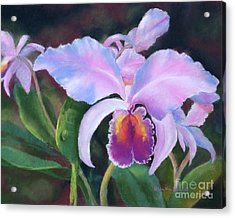 Exotic Pink Orchid Acrylic Print