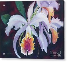 Exotic White Orchid Acrylic Print