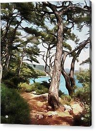 Explore Dream Discover Acrylic Print by Tracey Harrington-Simpson