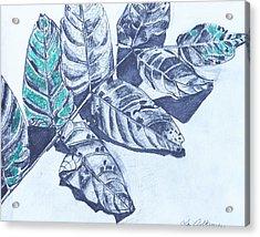 Exploring A Leaf 1 Acrylic Print