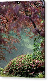 Acrylic Print featuring the photograph Exploring Beauty by Brandy Little