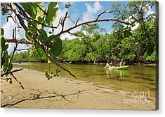 Exploring South Florida's Wilderness - Father And Son Kayaking Acrylic Print