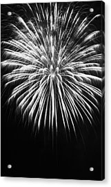 Explosion Acrylic Print by Colleen Coccia