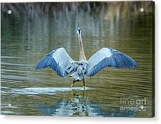 Expose Yourself To Nature Acrylic Print by Emily Bristor