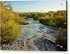 Acrylic Print featuring the photograph Exposed Sandstone In North Head by Miroslava Jurcik