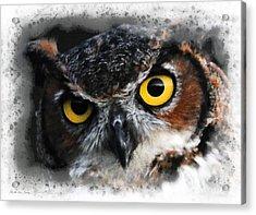 Acrylic Print featuring the digital art Expressive Owl Digital A2122216 by Mas Art Studio