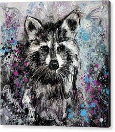 Expressive Raccoon Acrylic Print