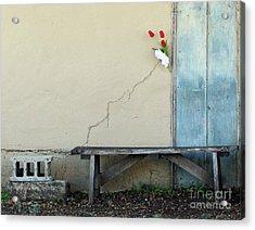Acrylic Print featuring the photograph Exterior Decorator by Joe Jake Pratt