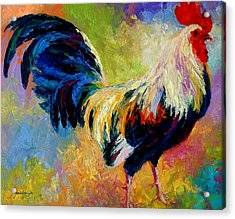 Eye Candy - Rooster Acrylic Print by Marion Rose