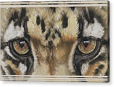 Eye-catching Clouded Leopard Acrylic Print