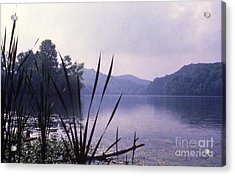 Eye-level Radnor  Acrylic Print by Randy Muir