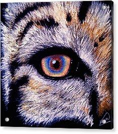 Eye Of A Tiger Acrylic Print