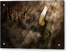 Eye Of The Hunted Acrylic Print